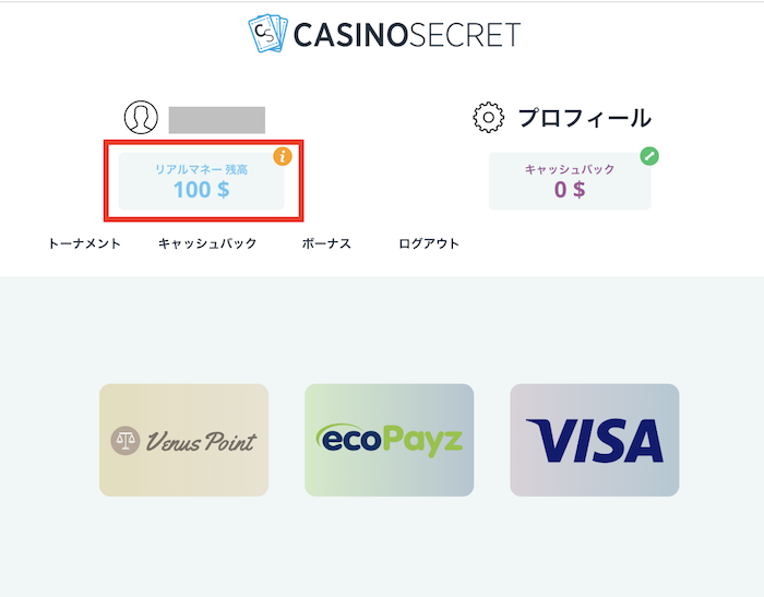 カジノシークレットの入金方法解説5